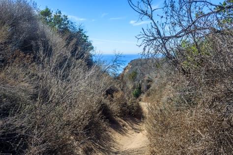 La Piedra State Beach Trail